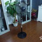 最低价志高美的电风扇,功能正常底价转让80一台共6台