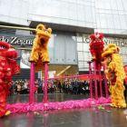 福州舞狮、福州舞龙舞狮队、鼓乐队、福州最专业舞狮队