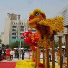 永泰庆典庙会活动舞狮表演,店庆开业舞狮舞龙舞狮队