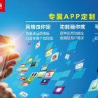 福建企业移动手机APP定制开发公司网站建设公司
