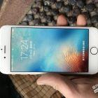 苹果6 金色16G 全网通 4G 自用八成新 1000出