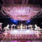 宇纳婚庆周年活动最低5折婚礼策划,热销套系低至2899元