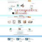 雅虎代拍代购网站制作,雅虎竞拍自动出价系统